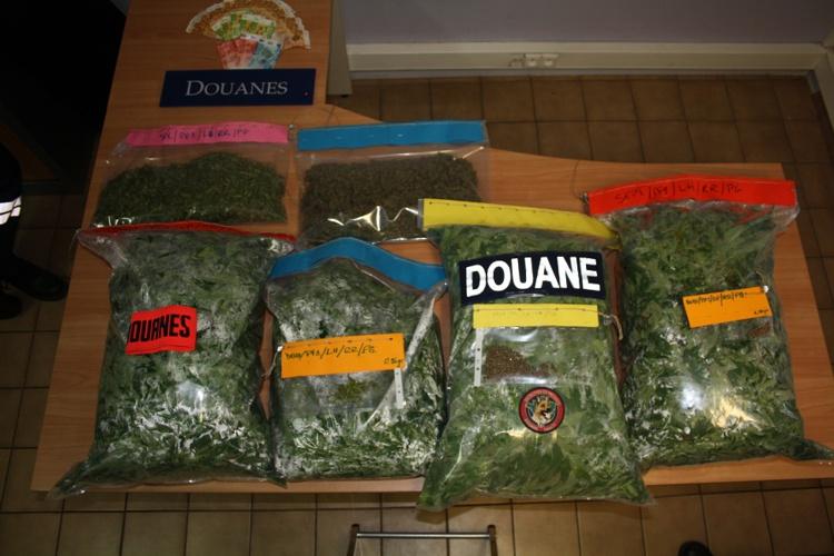 13,5 kilos de paka saisis par la douane