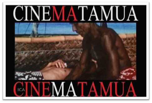 """The Tahitian, ra'au tahiti"" : la médecine traditionnelle pour lutter contre la filariose"