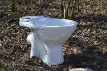 Danger, WC ! Une femme blessée dans l'explosion de toilettes en Autriche