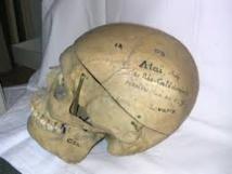 En Nouvelle-Calédonie, le crâne du guerrier Ataï fédère les communautés