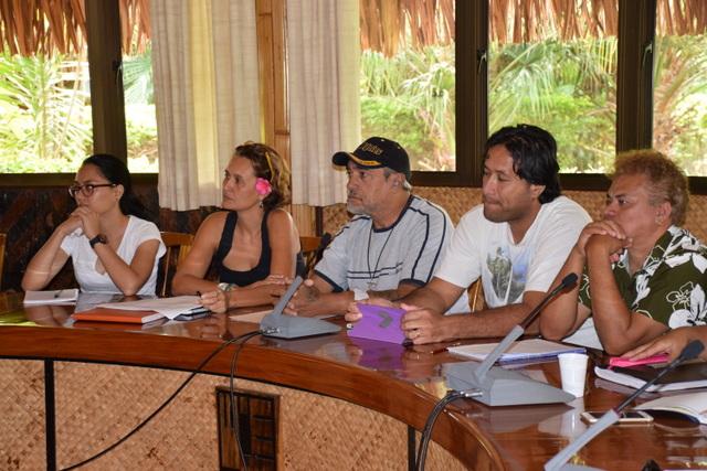 Un comité de pilotage sera mis en place afin de controler les résultats des actions qui seront mises en place, pour lutter contre la violence sur Faaa.