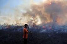 Indonésie: les incendies de forêts pourraient devenir les pires jamais connus