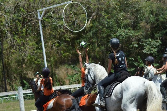 La fête du cheval s'est tenue dimanche dernier