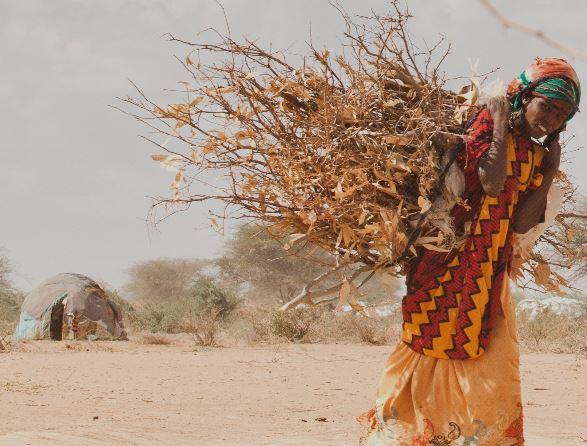"""Appel de personnalités pour """"soutenir les femmes face au dérèglement climatique"""""""