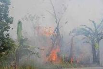 Incendies en Indonésie: l'aide internationale ne suffira pas