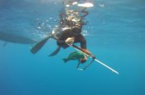 Pêche sous marine: Mémorial Teiefitu ce samedi 24 octobre