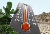 En 2015, la hausse des températures mondiales aura atteint + 1°C depuis l'ère pré-industrielle