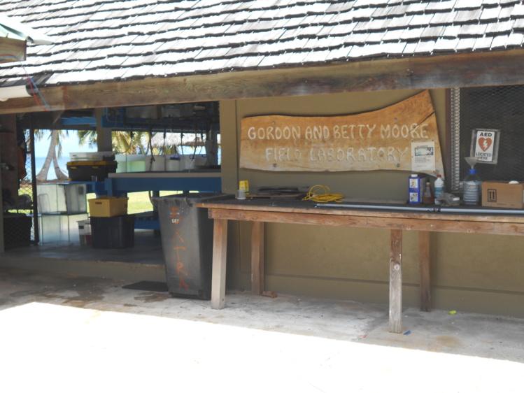 La station Gump de l'université de Berkeley a célébré ses 30 ans d'existence à Moorea, la semaine dernière