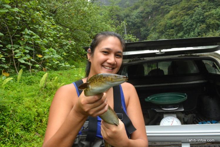Herehia Helme, doctorante qui réalise une thèse sur les anguilles