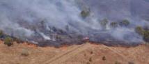 En Nouvelle-Calédonie, les feux liés à El Nino détruisent la biodiversité