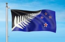 Drapeau: les Néo-Zélandais choisissent une fougère pour affronter l'Union Jack