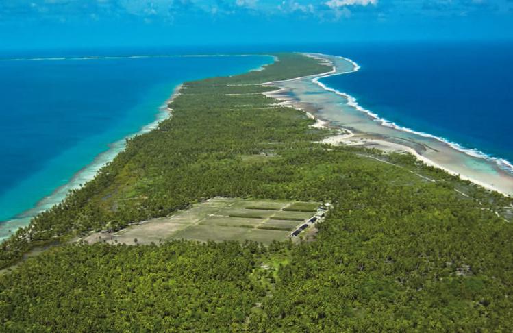 À Rangiroa, la vigne pousse sur l'atoll