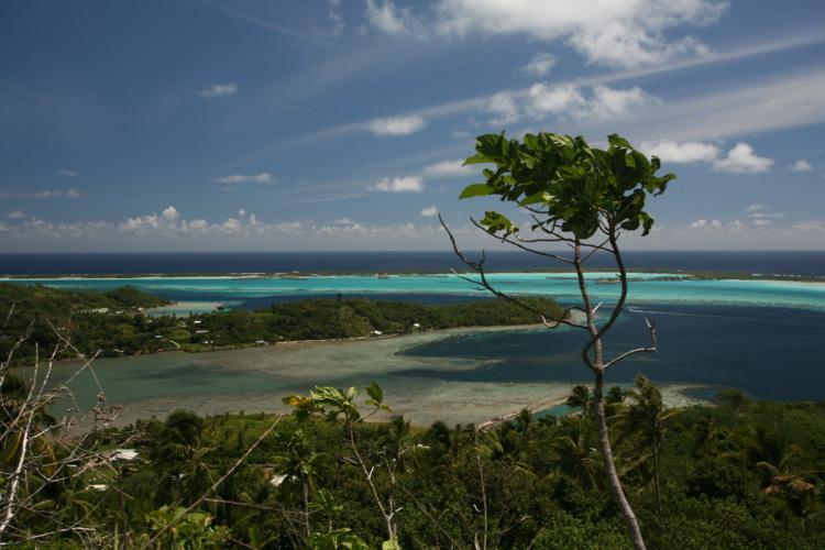 Dès que la montée commence, sorti d'un premier sous-bois, la vue sur le lagon se révèle magnifique.
