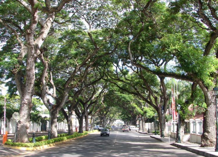 L'avenue Pouvanaa A Opaa aujourd'hui, vue vers la mer depuis le carrefour de la rue Dumont Durville