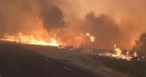 L'Indonésie sanctionne des sociétés impliquées dans les immenses feux de forêt