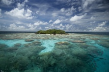 Toute l'équipe de Tahiti Infos vous souhaite ses meilleurs vœux pour la nouvelle année.
