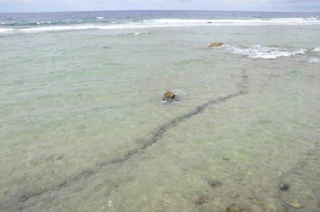 Des travaux réalisés sur le risque tsunami en cas d'un effondrement massif à Moruroa (photo) ont indiqué la propagation d'un train d'ondes de type tsunami qui se déplacerait à la vitesse d'environ 700 km/h et son déferlement sur les platiers de Tureia et Vanavana.