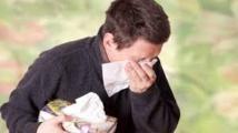 Les allergies proviendraient de gènes hérités de l'homme de Néandertal