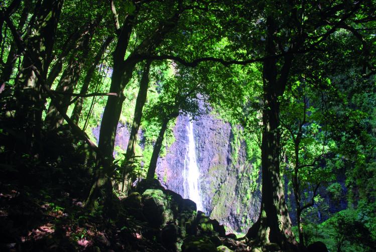 De l'eau coulait sur les parois de la montagne, Ivi et Faùai furent recouverts, et l'on dit depuis qu'ils vivent heureux derrière les cascades