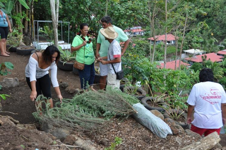 Un terrain de 300 m² a été mis à la disposition des familles pour la réalisation de ce jardin partagé commun