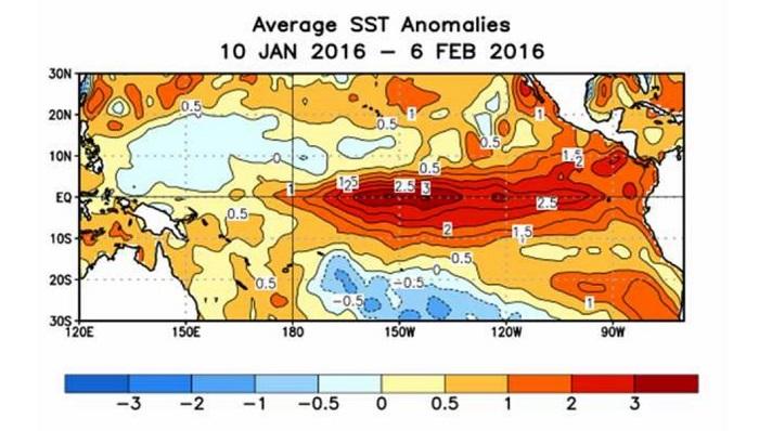 Anomalies de température de surface de la mer dans l'océan Pacifique.