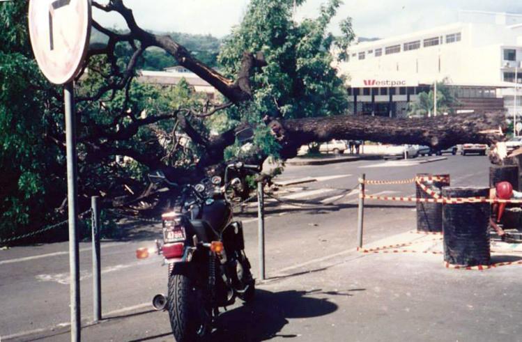 Le marumaru abattu par les grévistes en avril 1994 -  Photo Beslu