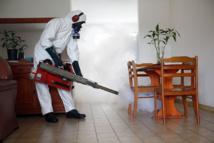 Zika : les microcéphalies pas liées aux produits anti-moustiques en Polynésie