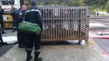Un an avec sursis et amendes contre un Espagnol qui transportait 21 animaux sauvages