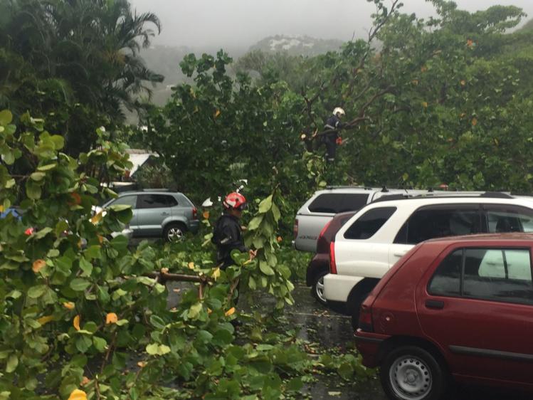 Chutes de pierre, arbres couchés sur la chaussée, les pluies provoquent des dégâts