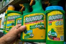 Le glyphosate est l'herbicide le plus utilisé dans le monde.
