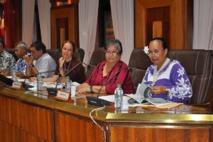 La stratégie de développement touristique de la Polynésie française a été passée à la moulinette par les représentants du CESC.