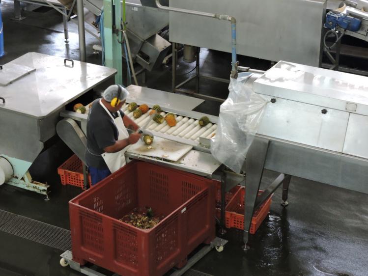 Une proposition de loi pour protéger l'emploi local
