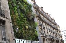 """Avec des """"Paris-culteurs"""", Paris veut végétaliser ses murs et faire pousser des légumes"""