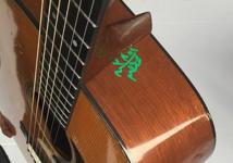 La douane égyptienne gribouille sur la guitare du chanteur Bryan Adams