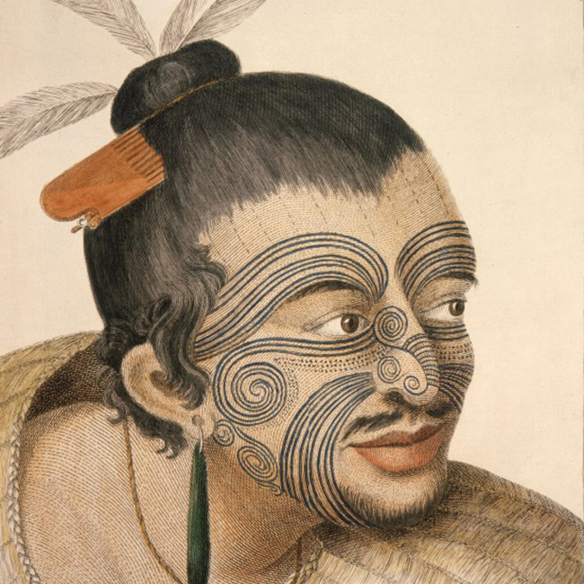 Dessin d'un chef māori par Parkinson, suite au premier voyage du Capitaine James Cook en Nouvelle-Zélande