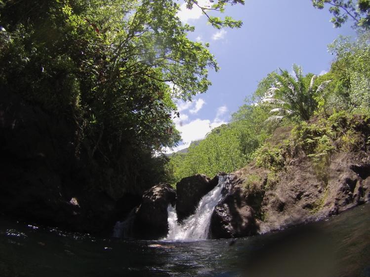 Fermeture exceptionnelle du parc de Te Faaiti jusqu'au 20 mars