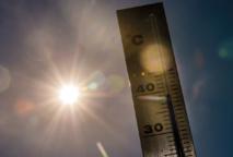 Le mois dernier a été le mois de février le plus chaud jamais enregistré