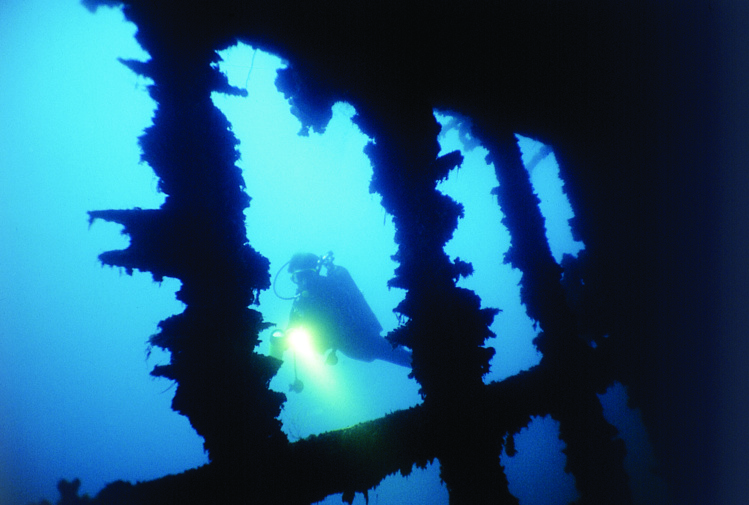 L'épave mesure une centaine de mètres de long. C'est sans doute la plus belle de Polynésie et, surtout, l'une des plus accessibles.