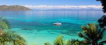 Madagascar: double saisie de corail noir, menacé d'extinction