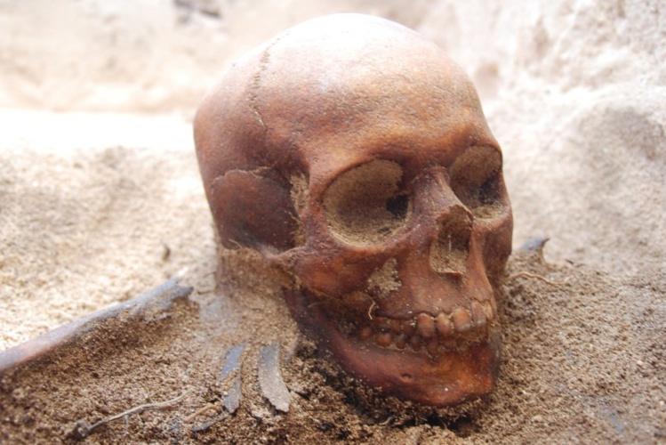 Un crâne retrouvé lors de fouilles, sur l'îlot où furent massacrés 125 personnes par les sbires de Jeronimus Corneliszoon.