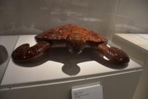 Tortues : De nombreuses sculptures dont la tortue sont visibles au quai Branly.