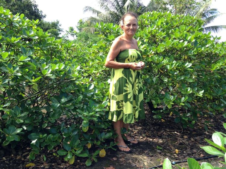 Mamie Juliette cultive des tiare tahiti, aujourd'hui elle se dit inquiète pour l'avenir de son exploitation