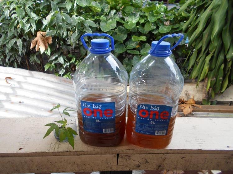 La police saisit 155 litres de komo, quartier Mamao