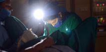 L'Inde, nouvelle destination en vue pour les opérations de changement de sexe