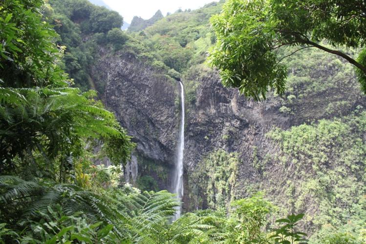 Deux randonnées sont possibles dans la vallée de la Fautaua. L'une mène au sommet de la cascade, l'autre à son pied. Les deux sont fermées pour le moment.