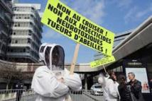Loi biodiversité/abeilles: les néonicotinoïdes au coeur des débats