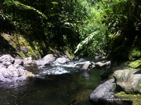Le corps sans vie d'un homme de 22 ans découvert dans la vallée de la Fautaua