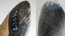"""Australie: découverte d'un fragment de """"la plus ancienne"""" hache connue"""