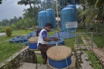 Dans un village d'Indonésie, du jus de tofu transformé en électricité verte