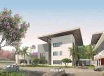 Conçu par le cabinet Sextant Architecture, le nouveau pôle de santé mentale de Polynésie prendra place sur le site de l'ancien hôpital Jean Prince. Il fera environ 10 000 m2 sur quatre niveaux, dont un sous-sol et aura une capacité de 37 lits d'hospitalisation et un total de 110 places.